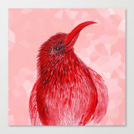 Hello There Red Bird Canvas Print