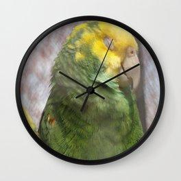 Sleepy Bird Wall Clock