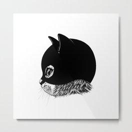 Kittenplay Metal Print