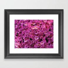 Pink  Flurry Framed Art Print
