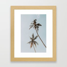 two palm trees Framed Art Print