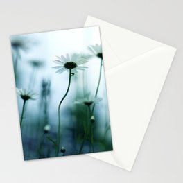 nakazora Stationery Cards