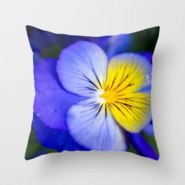 Pansy Close-up Square Throw Pillow