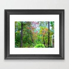 Magical Forrest Framed Art Print