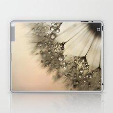 Peach & Dandy Laptop & iPad Skin