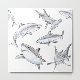 Shark-Filled Waters Metal Print