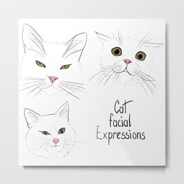 Cat facial expressions Metal Print