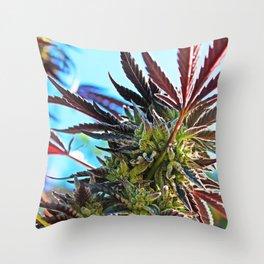 Beauty Bud Throw Pillow
