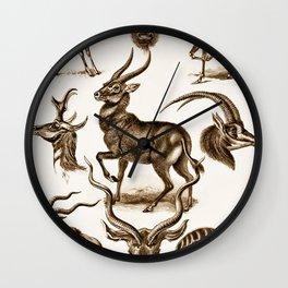 Ernst Haeckel Antilopina Antelope Wall Clock