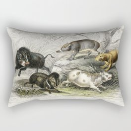 Wild Boar Collared Peccary Chinese Sow Capibara and Babyroussa from A history of the earth and anima Rectangular Pillow