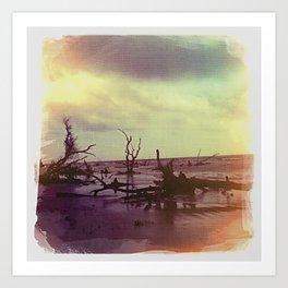 Driftwood 3, Charleston, SC Art Print