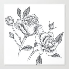 Twin Roses Inked Drawing Canvas Print