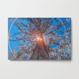 High Tree Metal Print