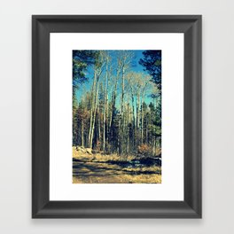 Aspens in Winter  Framed Art Print