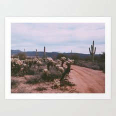 Desert Winter Art Print