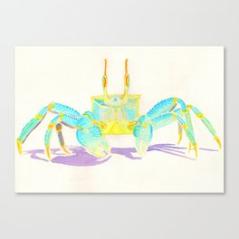 Turquoise Crab Canvas Print