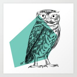 KUVIK  Little Owl (Athene Noctua) Art Print