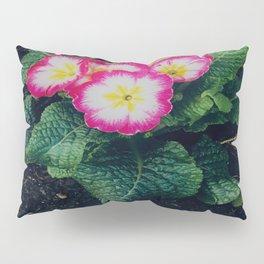 Spring time Pillow Sham