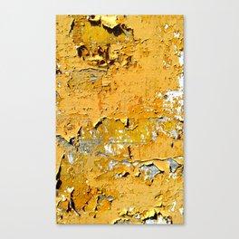 Faded II Canvas Print