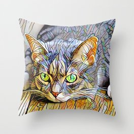 The TABBY II from our FUNK YOUR FELINE line Throw Pillow