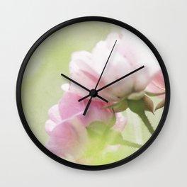 soft rose blooming Wall Clock