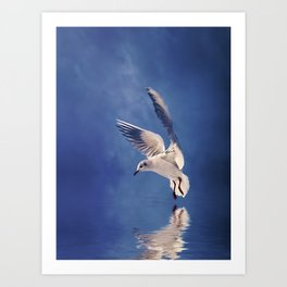 Reflections in Blue Art Print