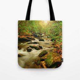 Fall Along Rock Castle Tote Bag