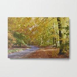 Remote country road through Autumnal woodland. Norfolk, UK. Metal Print