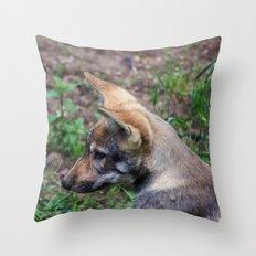 Canis Lupus Lupus II Throw Pillow