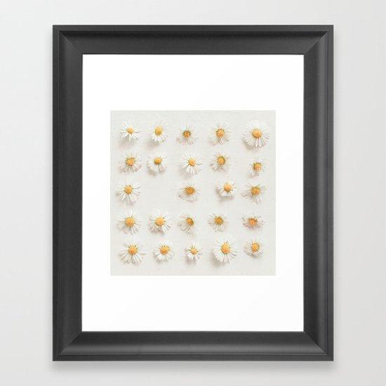 Daisy Collection Framed Art Print