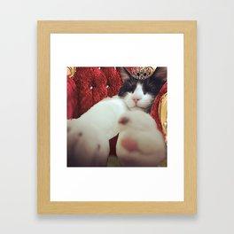 Prince Lancelot Framed Art Print