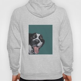 Maeby the border collie mix Hoody