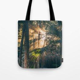 Hermosa Luz Tote Bag