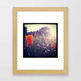 Sunset Orange Framed Art Print