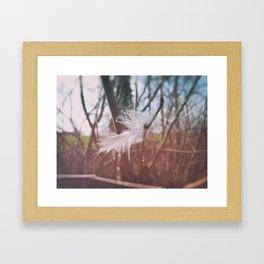 Soft Hello Framed Art Print