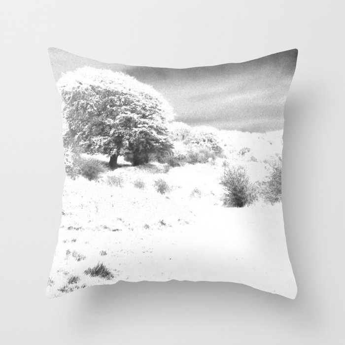 Haresfield In The Snow Throw Pillow