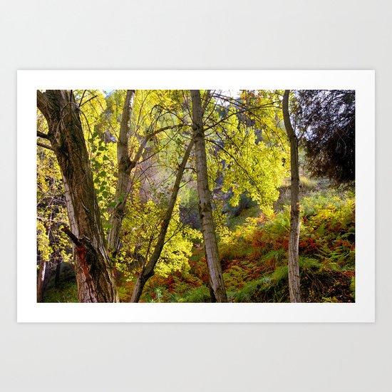 bright leaves in dense forest Art Print