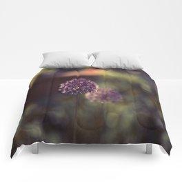 Like yesterday Comforters