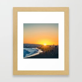 Seal Framed Art Print