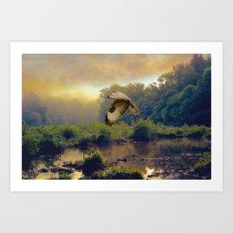 Morning Buzzard Art Print