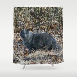 Cat in the Woods Shower Curtain