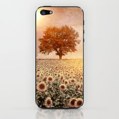 lone tree & sunflowers field (colour option) iPhone & iPod Skin