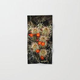 Southwest Cactus Flowers Hand & Bath Towel