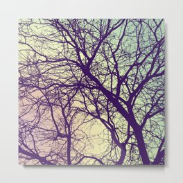 A Network of Tree Branches Metal Print