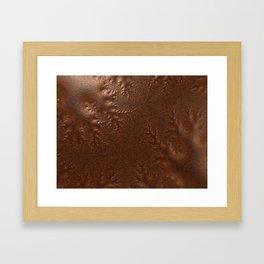 Burnished  Copper Framed Art Print
