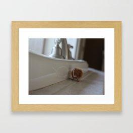 Orange mouse Framed Art Print