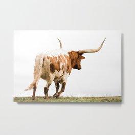 Longhorn Takin a Walk Metal Print