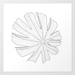 Cecropia Leaf Art Print