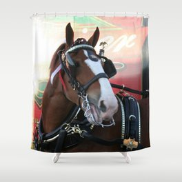 BUDWEISER Clydesdale Shower Curtain