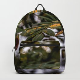 Autumnal leaves on tree Backpack